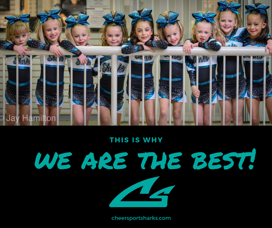 We Are The Best Cheer Leaders FB